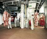 Industrieboden Service, Fachbetrieb Boden, Bodenbeschichtung Kassel